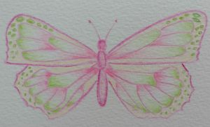 NLSG Pink and green butterfly logo